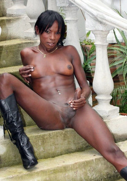 Black trannies posing naked in the..